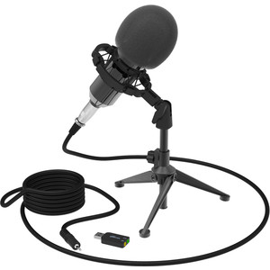Фото - Микрофон Ritmix RDM-160 black микрофон recording tools mcu 01 usb black стойка и амортизатор
