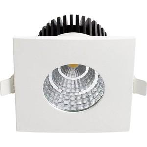 Уличный светодиодный светильник Horoz 016-030-0006