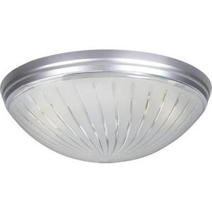 Потолочный светильник Horoz 400-011-104