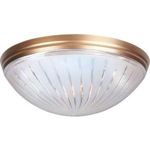 Потолочный светильник Horoz 400-021-104