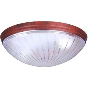 Потолочный светильник Horoz 400-031-104