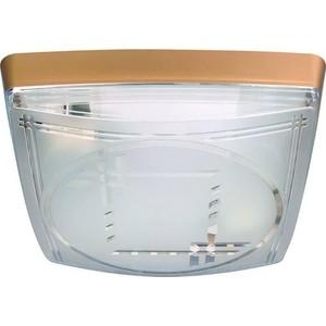 Потолочный светильник Horoz 400-021-103 потолочный светильник horoz 400 021 104