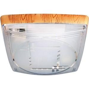 Потолочный светильник Horoz 400-041-103 потолочный светильник horoz 400 021 104