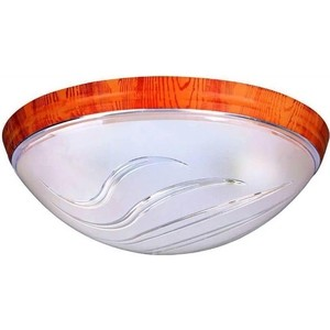 Потолочный светильник Horoz 400-040-104