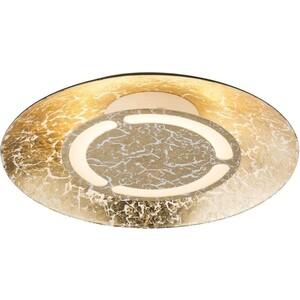 цена на Потолочный светодиодный светильник Globo 41900-6
