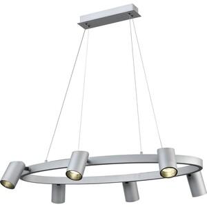Подвесной светильник Vele Luce VL10113P06