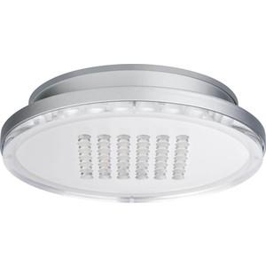 Потолочный светодиодный светильник Paulmann 92790 цены онлайн