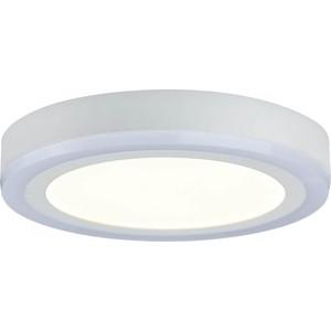 Потолочный светодиодный светильник Paulmann 70737 цены онлайн