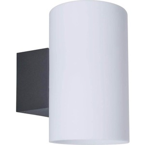 Уличный настенный светильник Paulmann 94186 накладной светильник tabo 94186