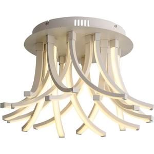 Потолочная светодиодная люстра ST-Luce SL827.502.20