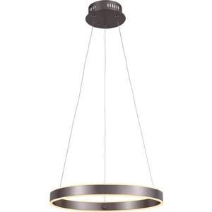 Подвесной светодиодный светильник ST-Luce SL407.303.01