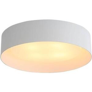 Потолочный светильник ST-Luce SL392.502.04
