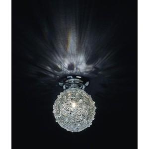 Потолочный светильник ST-Luce SL612.002.01