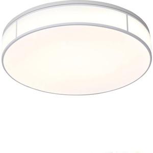 Потолочный светодиодный светильник ST-Luce SL417.502.01