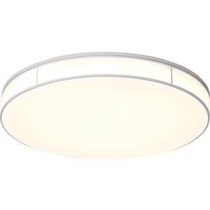 Потолочный светодиодный светильник ST-Luce SL417.512.01