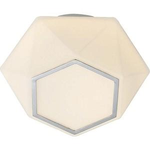 Потолочный светодиодный светильник ST-Luce SL558.502.01