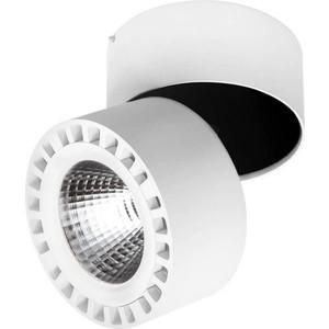 Потолочный светодиодный светильник Lightstar 381363