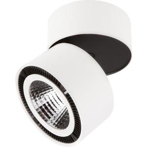 Светодиодный спот Lightstar 213816 светодиодный спот lightstar 213817
