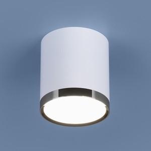 Потолочный светодиодный светильник Elektrostandard 4690389110368
