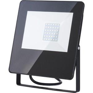Прожектор светодиодный Elektrostandard 4690389126826