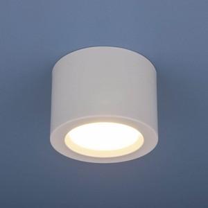 Потолочный светодиодный светильник Elektrostandard 4690389120671