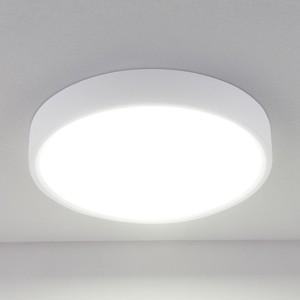 Потолочный светодиодный светильник Elektrostandard 4690389134609
