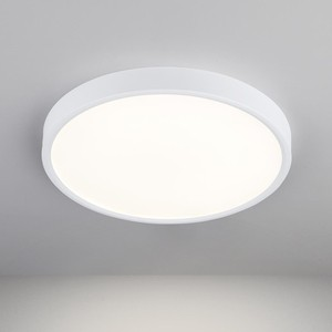 Потолочный светодиодный светильник Elektrostandard 4690389134616