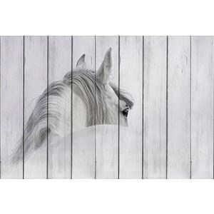 Картина на дереве Дом Корлеоне Белая лошадь 100x150 см
