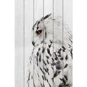 Картина на дереве Дом Корлеоне Белая сова 80x120 см