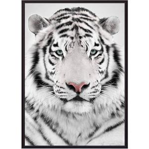 Постер в рамке Дом Корлеоне Белый тигр 30x40 см рамка inspire nina 30x40 см цвет белый