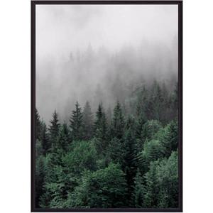 Постер в рамке Дом Корлеоне Бирюзовый лес 50x70 см