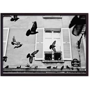 Постер в рамке Дом Корлеоне Голуби Париж 40x60 см