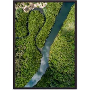 Постер в рамке Дом Корлеоне Джунгли с высоты 50x70 см фото