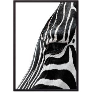 Постер в рамке Дом Корлеоне Зебра в профиль 30x40 см постер в рамке дом корлеоне профиль 30x40 см