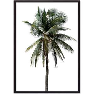 Постер в рамке Дом Корлеоне Зеленая пальма 40x60 см ходунки bambola пальма голубой