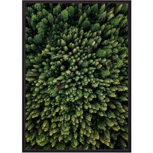 Постер в рамке Дом Корлеоне Зеленый лес с высоты 21x30 см постер в рамке дом корлеоне зеленый лес 21x30 см