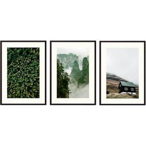 Набор из 3-х постеров Дом Корлеоне Коллаж Природа №155 40х60 см 3 шт.