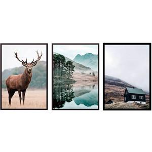 Набор из 3-х постеров Дом Корлеоне Коллаж Природа №173 30х40 см 3 шт. фото