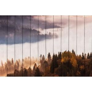 Картина на дереве Дом Корлеоне Лесной пейзаж 60x90 см картина репродукция без рамки пейзаж 78 см х 80 см х 3 см