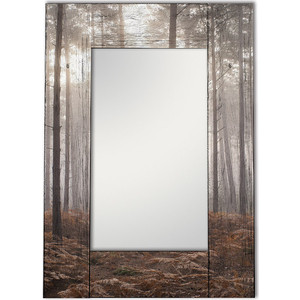 Настенное зеркало Дом Корлеоне Лесной туман 50x65 см