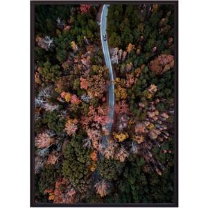 Постер в рамке Дом Корлеоне Осенний лес с высоты 21x30 см фото