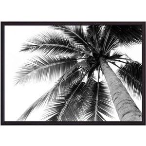 Постер в рамке Дом Корлеоне Пальма 50x70 см ходунки bambola пальма голубой