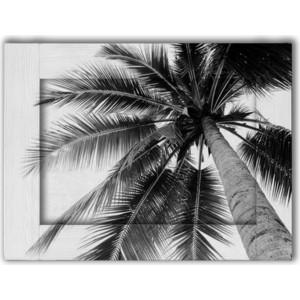 Картина с арт рамой Дом Корлеоне Пальма 60x80 см ходунки bambola пальма голубой