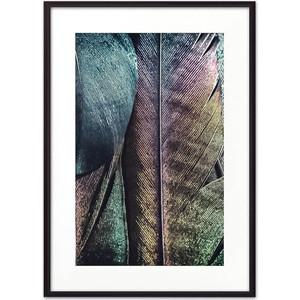 Постер в рамке Дом Корлеоне Перья 50x70 см постер в рамке дом корлеоне белые перья 50x70 см
