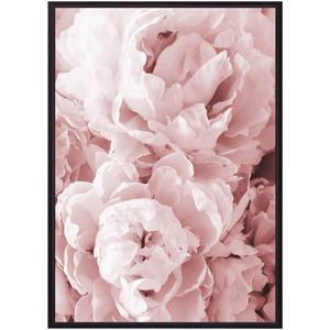 Постер в рамке Дом Корлеоне Розовые пионы 40x60 см