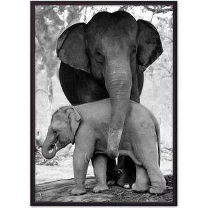 Постер в рамке Дом Корлеоне Слониха с детенышем 40x60 см фото
