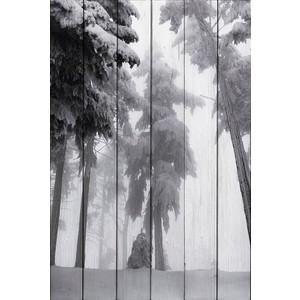 Картина на дереве Дом Корлеоне Снежные сосны 80x120 см фото