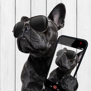 Картина на дереве Дом Корлеоне Собака с телефоном 60x60 см
