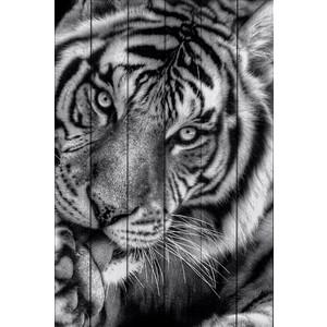 Картина на дереве Дом Корлеоне Тигр 30x40 см