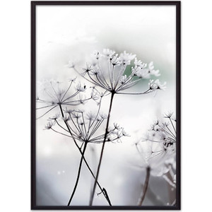Постер в рамке Дом Корлеоне Цветы-зонтики 40x60 см